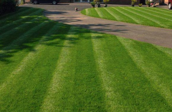 landscaping birmingham