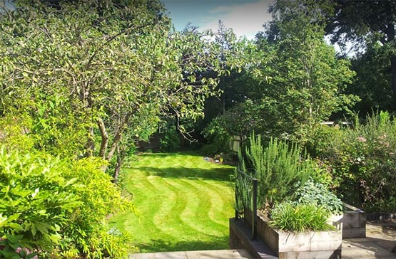 Lawn mowing Kings Heath